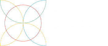 Democracy elements-01
